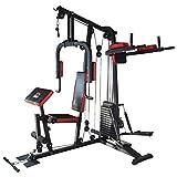 TrainHard HomeGym Multistation Fitnesscenter mit 65KG Gewichten inkl. Dipstation, Beinhebe & Stepper