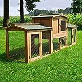 Zooprimus Kaninchenstall 1 XXL PL Hasenkäfig - Sheriff - Stall für Außenbereich (für Kleintiere: Hasen, Kaninchen,...