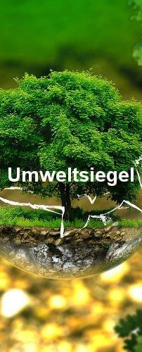 Umweltsiegel und ihre Vorstellung. Ein Baum in einem zerbrochenen Glas